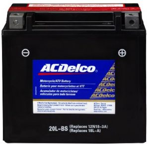 AC Delco Power Sport Marine Battery